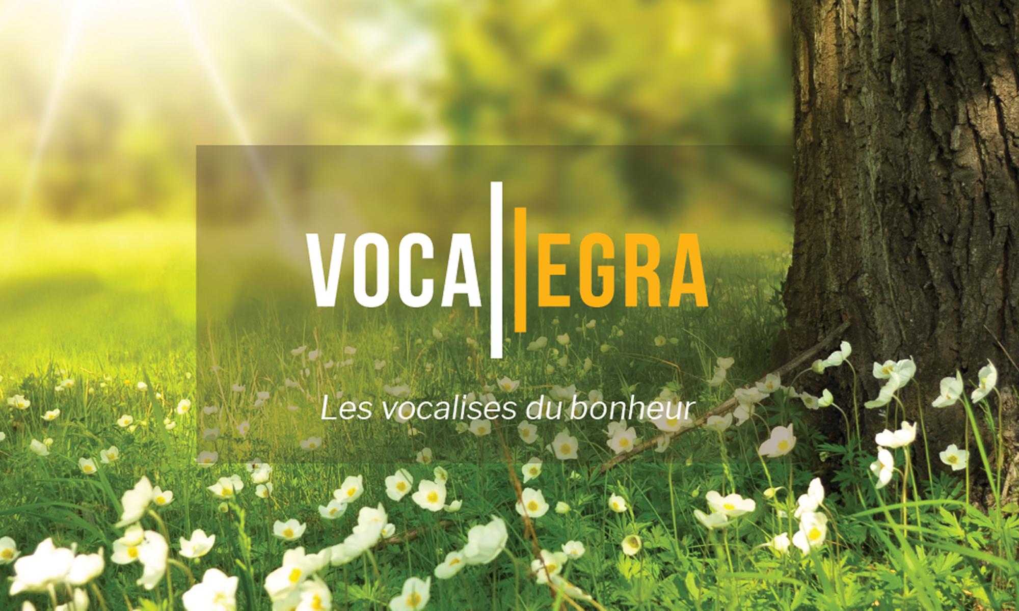 Vocallegra, Cours de chant et développement personnel en ligne avec Dominique